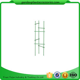 China Durable Garden Plant Stakes supplier
