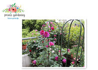 China Nursery House Garden Stake Solid Frame Flower Support Ushape Pipe factory