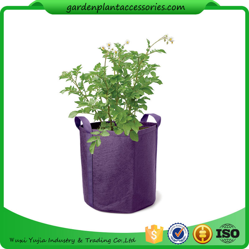 Elegant China Hanging Grow Bags Garden Plant Accessories , Garden Grow Bags For  Plants Supplier
