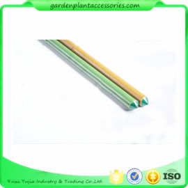 8mm Green Plastic Coated Bamboo Garden Stakes / 8 Foot Bamboo Pole